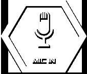 mic_in